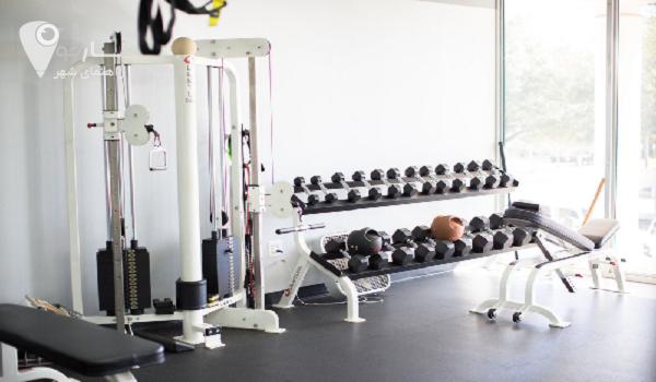 دستگاه های ورزشی در بدنسازی بسیار متنوع هستند.