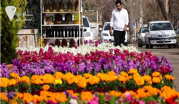 گلخانه قصرالدشت شیراز