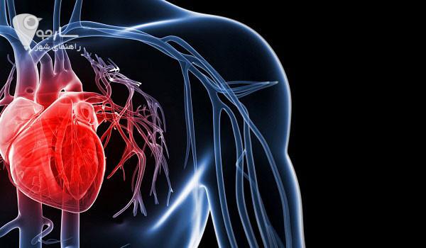 متخصص قلب شیراز متخصص قلب در شیراز آدرس متخصص قلب شیراز لیست پزشکان بیمارستان قلب کوثر شیراز لیست پزشکان قلب الزهرا شیراز بهترین دکتر قلب شیراز نی نی سایت