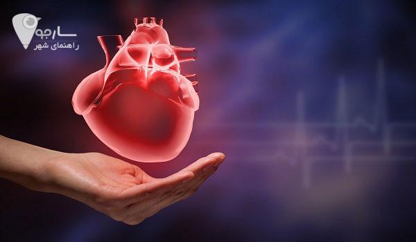متخصص قلب شیراز آدرس متخصص قلب شیراز دکتر محمد امیری متخصص قلب شیراز دکتر آقا صادقی متخصص قلب شیراز