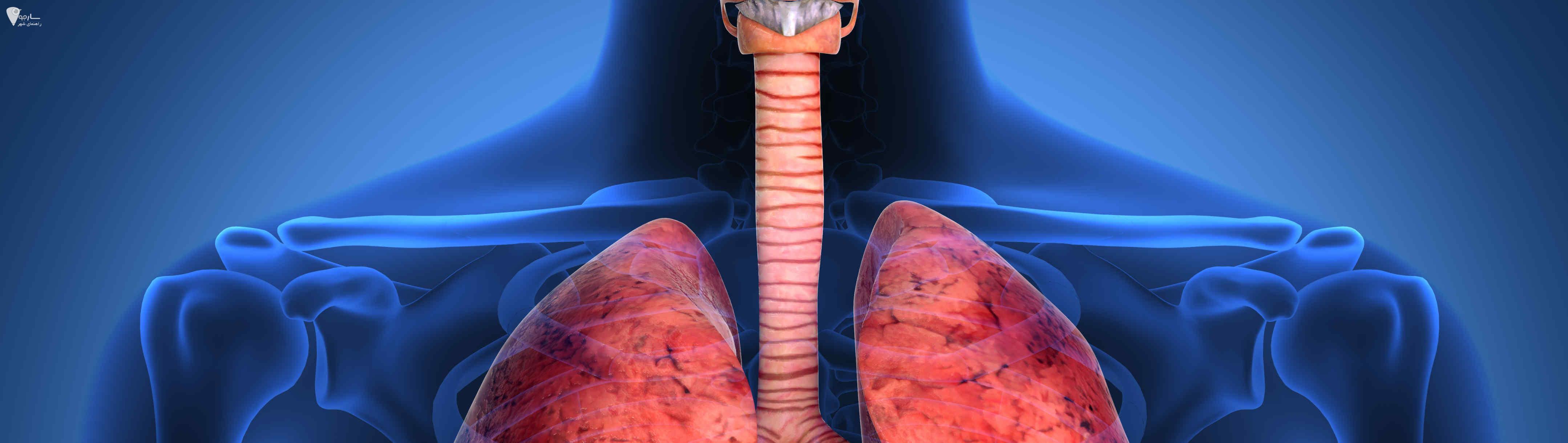وایتکس و ریه و عوارض وایتکس به همراه مضرات وایتکس بر ریه انسان