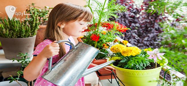 نحوه نگهداری از گل های آپارتمانی را مد نظر داشته باشید.