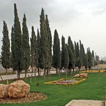پارک شهروند شیراز