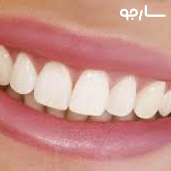 دکتر سید فرید نوری دندانپزشک عمومی شیراز