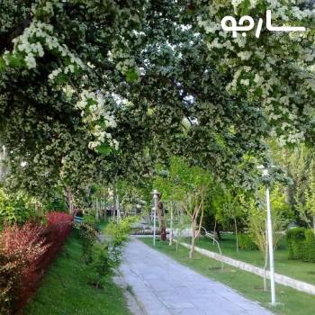 پارک یاس شیراز
