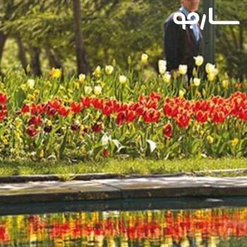 پارک هاشمی شیراز