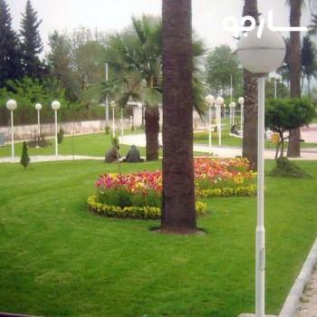 پارک ولیعصر شیراز